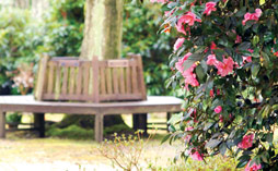 A bench and flowers in a garden of remembrance